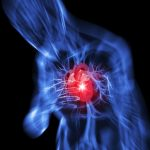 Using-Stem-Cells-to-Repair-and-Regenerate-Tissue-Damaged-by-a-Heart-Attack-465460-3
